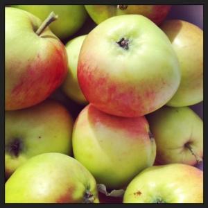 äppleträdet